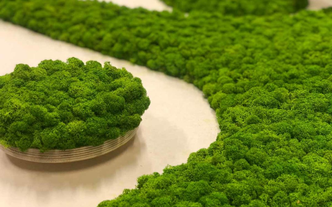 WLCOM : communiquez vert grâce au logo végétal